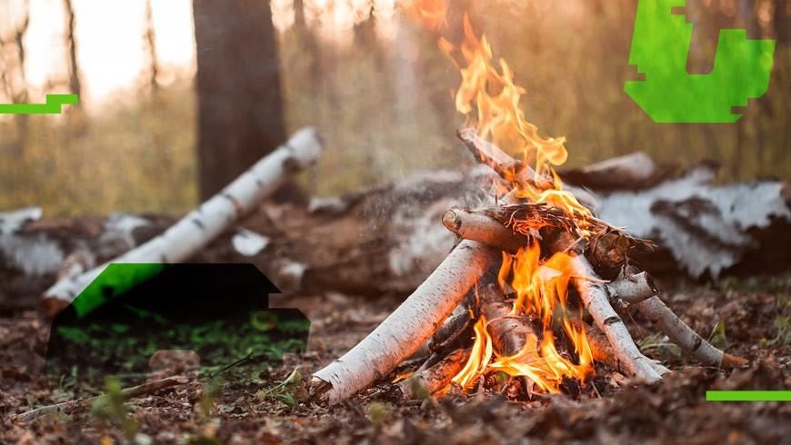 bezpieczne ognisko w lesie